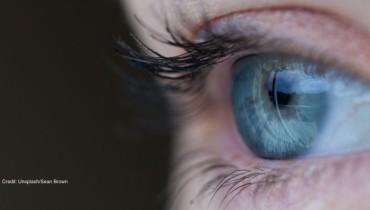 Ein Auge. Es sieht was online sichtbar ist.