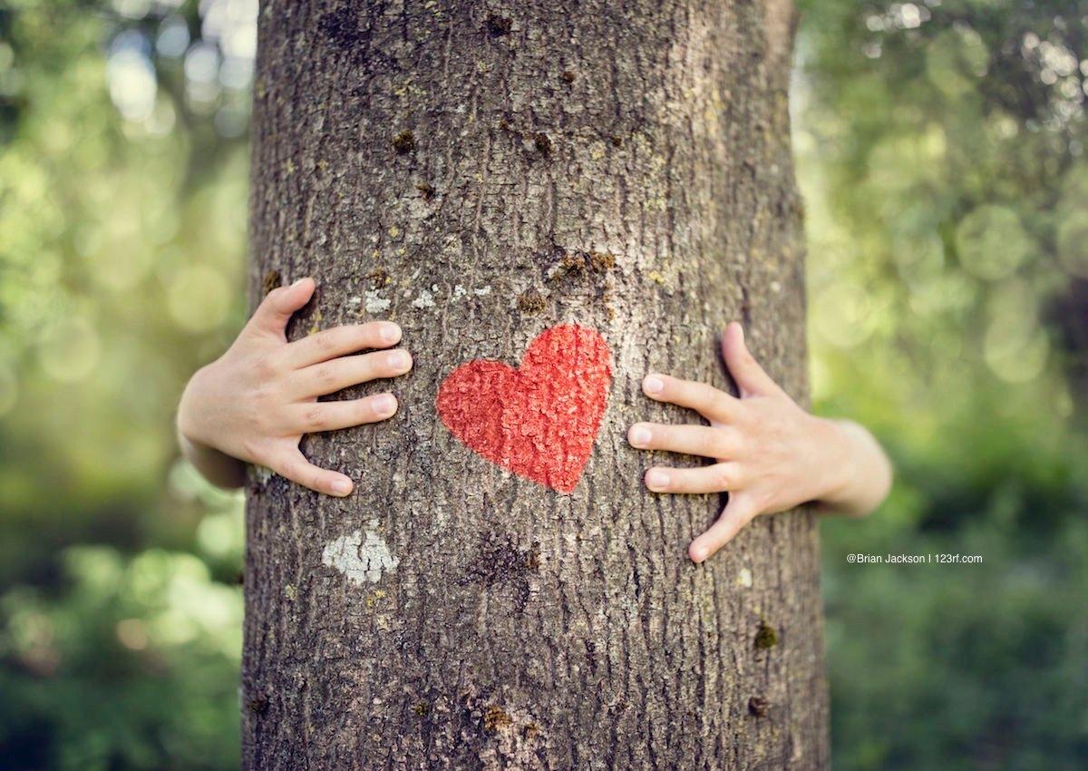 Kinderhände umfassen einen Baum auf dem ein rotes Herz ist